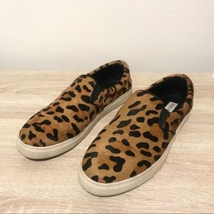 Steve Madden | Ecentric Leopard Slip on Sneaker